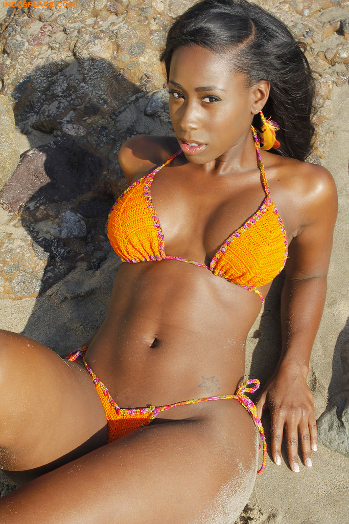 Bria Myles is Thick Again | Video Vixens | Indochine's Top Shelf